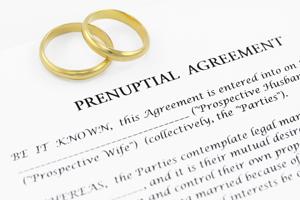 婚前協議保巨產