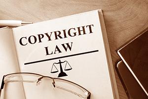 註冊商標遭異議     堅持到底或放棄